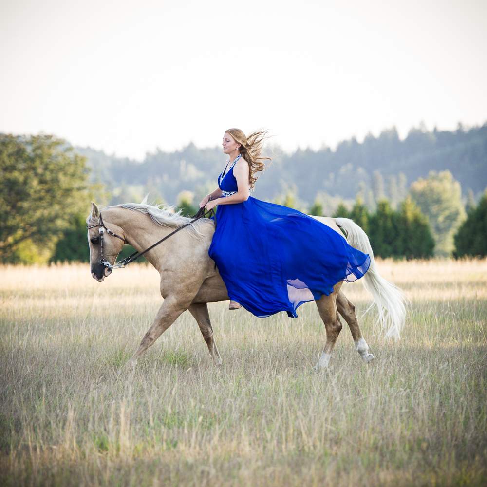 Equestrian Dress Shot-1
